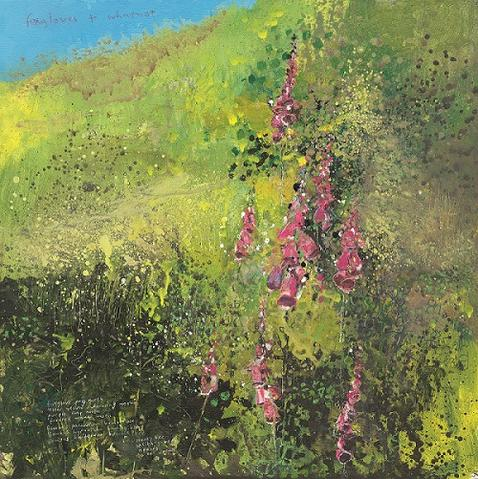 Foxgloves and whatnot. 2017