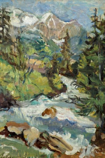 Image: Deane Emmeline, 'Mountain Torrent', oil on canvas. Adopted by Catriona Rowe (F)