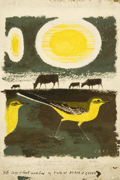 Image: Clifford and Rosemary Ellis, Sketch for cover of The Yellow Wagtail, Collins New Naturalists, 1950
