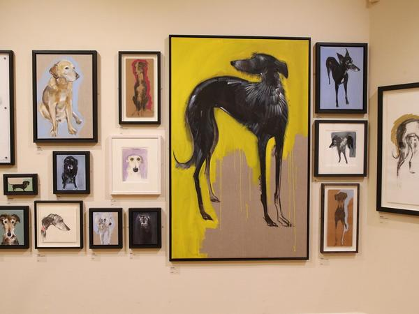 Image: Dog portraits by Sally Muir